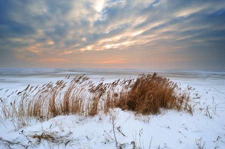 ijsselmeer: Beautiful winter landscape ( Laaksum Friesland IJsselmeer)