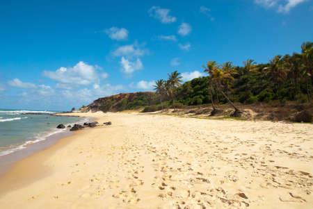 Beautiful beach with palm trees at Praia do Amor near Pipa Brazil Stock Photo