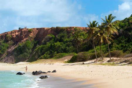 Hermosa playa con palmeras en Praia do Amor cerca de Brasil de Pipa