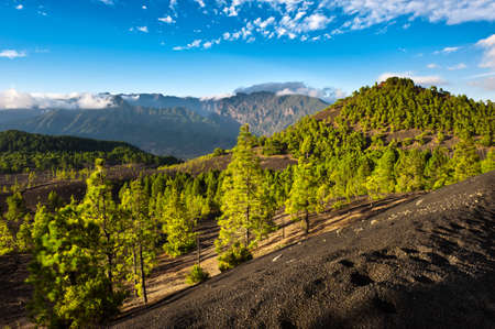 Beautiful lava landscape on the Cumbre Nueva in La Palma, Canary islands, Spain