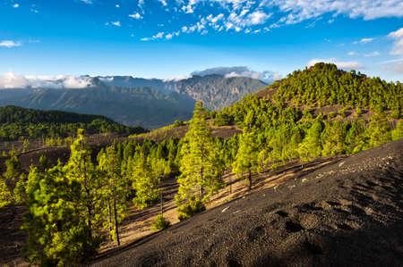 Schöne Lava-Landschaft auf der Cumbre Nueva in La Palma, Kanarische Inseln, Spanien Standard-Bild