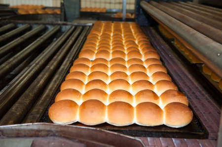 buns of bread being made in a factory  Standard-Bild