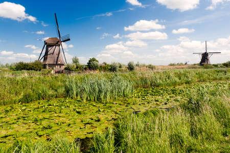 Windmill landscape at Kinderdijk near Rotterdam The Netherlands Фото со стока