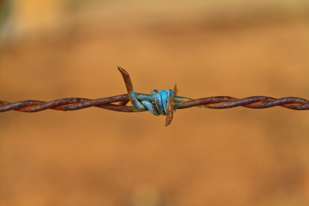Close-up rust barbed wire Stock Photo