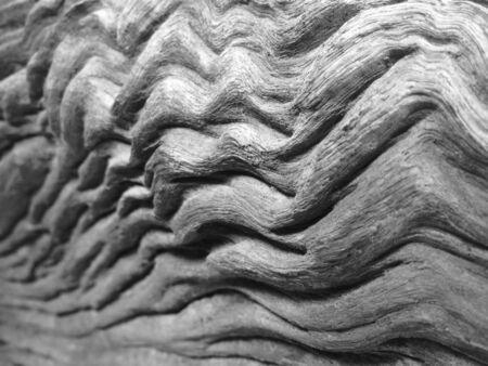 Gray of wood grain