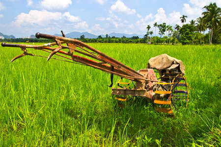 plough land: Vintage plows used to plow the field in farm rice