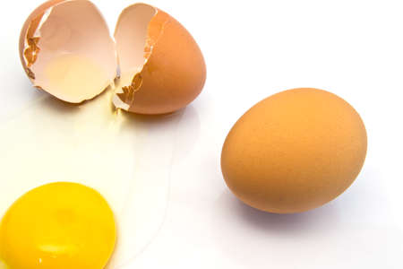 albumin: Cracked fresh hens egg with the bright yellow yolk and transparent albumin or egg white running over a white