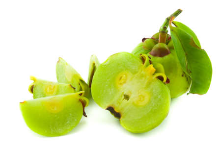 garcinia Cambogia isolated on white background with path