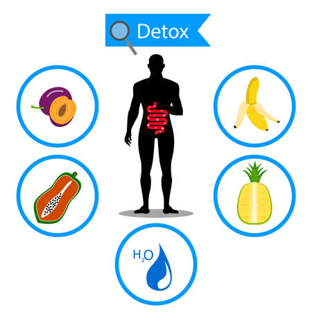colon cleansing: colon symbol on fruit and water with human body. Foods for cleansing your colon healthy concept.