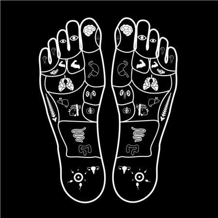 masaje de pie para la guía de piezas del cuerpo