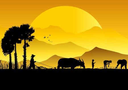 Silhouette of Asian farmer harrowing rice field.