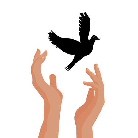 Hands release dove of peace. Colorful picture on white background. Flat illustration Ilustrace