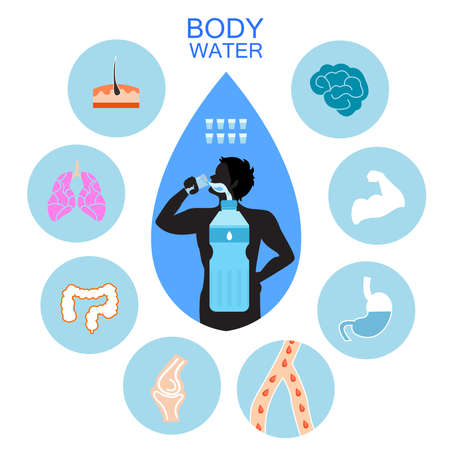 Water and human body infographic Vectores
