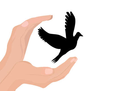 Hands release dove of peace. Colorful picture on white background. Flat illustration Illustration