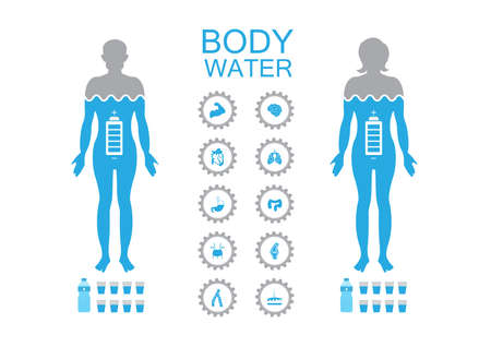 Body water infographics poster illustration with a man and woman Ilustrace