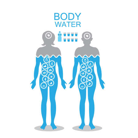 Body water infographic poster illustration with a man and woman