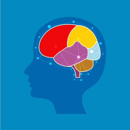 human Abstract brain wave concept on blue background, illustrator.