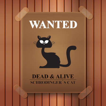 Illustration of a poster of a wanted balck cat on wood background. Ilustração