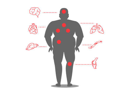 human fat with disease. Illustration in Infographic style about medical and health Иллюстрация