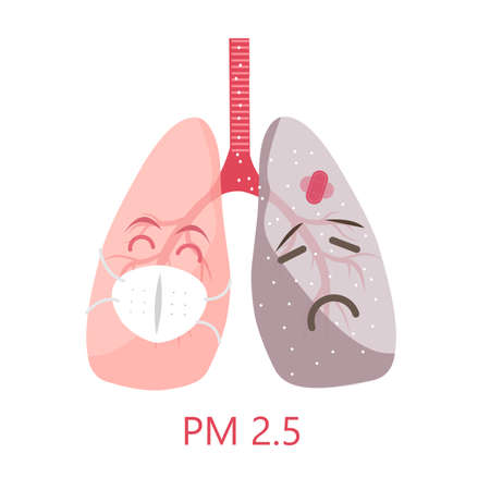 the mask protect for healthy lung with dont wear mask effect to lung pm 2.5 illustrator .