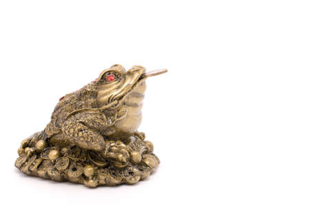 feng shui toad with coin isolated