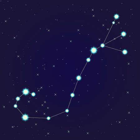 escorpio: Constelaci�n de Escorpio Vectores