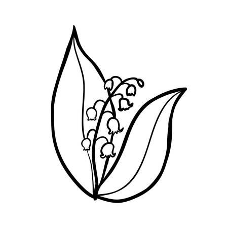 Vector hand drawn lily of the valley. Black sketch on white background. Vector