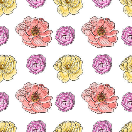 red rose black background: Briar rose sketch seamless pattern. Yellow, red and violet flowers with black outline on white background. Vector illustration. Illustration