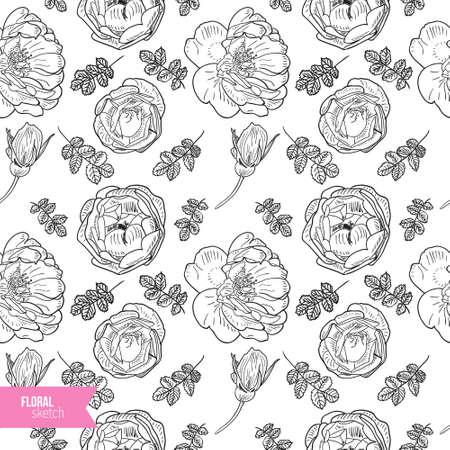 briar: Briar rose sketch seamless pattern. Black outline on white background. Vector illustration. Illustration