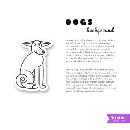 dog ears: Adult dog with big ears.