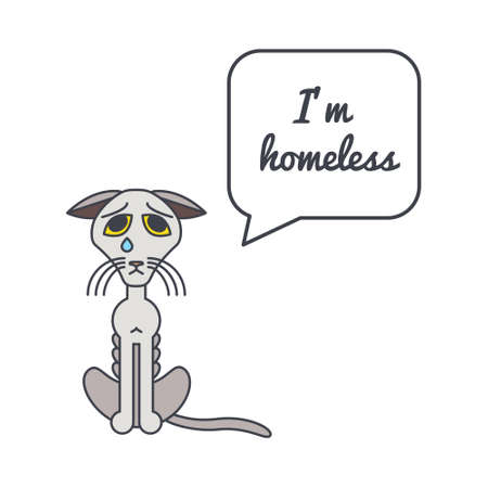 adoption: Bony homeless unhappy crying cat with speech bubble and saying. Vector color line illustration card on white background. You can put your own text in the bubble. Cat adoption concept.