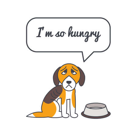 adoption: Unhappy hungry dog with speech bubble and saying.Vector color line illustration card on white background. You can put your own text in the bubble. Dog adoption concept. Illustration