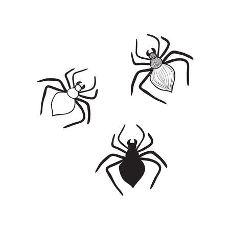 Hand drawn spiders.