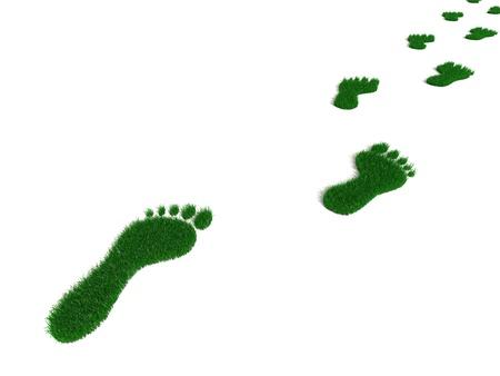 foot step: Verde erba che cresce impronte Archivio Fotografico