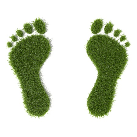 Green grass growing footprints Stock Photo