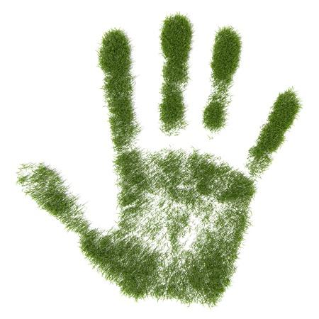 Green grass growing  hand print photo