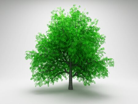 Green tree on gray background photo