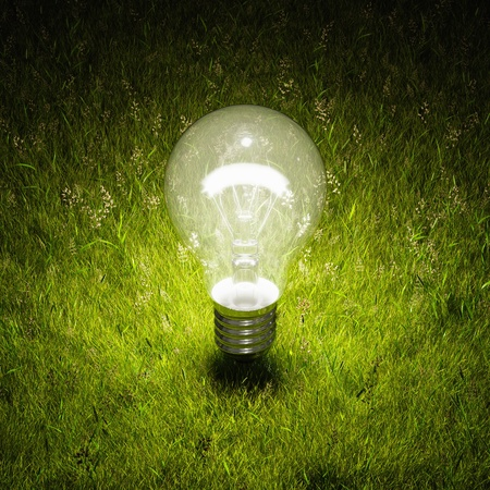 Illuminated light bulb on green grass Stock Photo - 20460545
