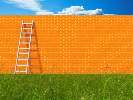 Blank brick wall with ladder on field Stock Photo - 21863771
