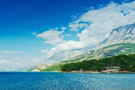 mediterranean forest: Amazing Adriatic Sea bay with pines and mountains