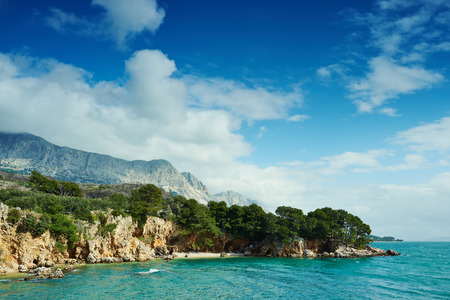 adriatic: Amazing Adriatic Sea bay with pines and crystal clear water in Croatia