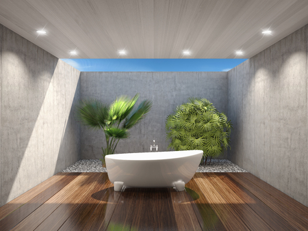 Tropical bagno esterno con giardino nel cortile Archivio Fotografico - 45663844