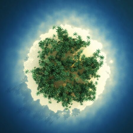 Tropical island in sea, top view. 3D illustration.