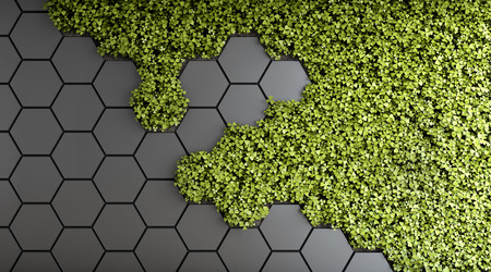 Decorative background of green vertical garden. 3D illustration. Stok Fotoğraf