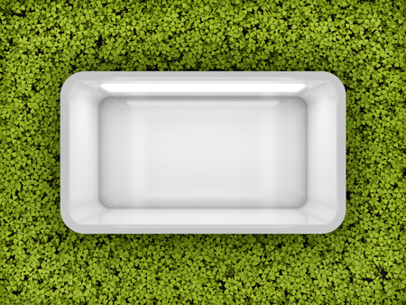 Empty showcase window with vertical green wall. 3D illustration.