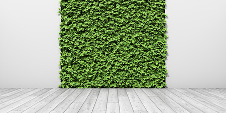 Green fresh vertical garden on wall with wooden floor. 3D illustration. Foto de archivo