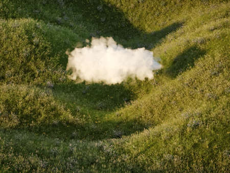 Fluffy cloud over hilly flower meadow, conceptual art,  3D illustration, rendering.
