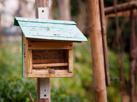 bird s house: A little house for birds