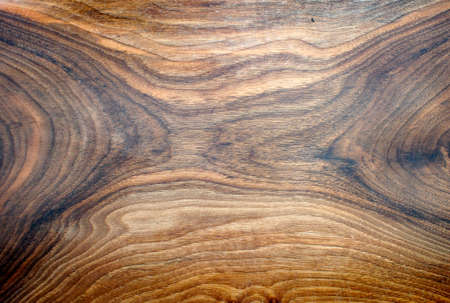 veining: Bottom of an handmade wooden plate. Abstract texturized composition. Stock Photo