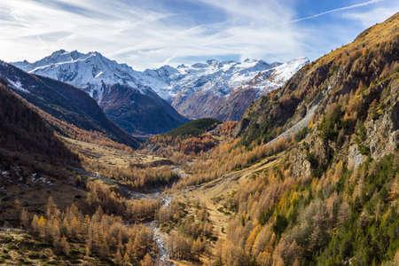 Autumn colors in high mountain (Grauson walloon), Cogne valley, Aosta Italy